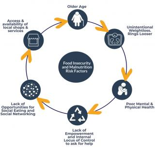 Cycle of Risk for Undernutrition and Household Food Insecurity