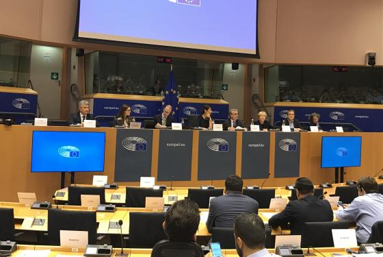 New Executive Director presents Cedefop to new European Parliament EMPL Committe
