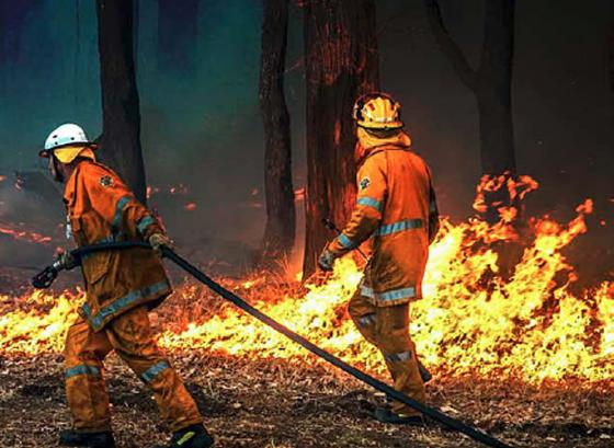 Bushfire recovery, Indigenous adult literacy, retraining for older drivers and more: Quest magazine