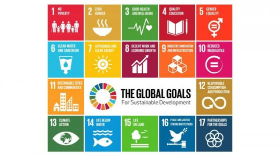 The 2020 Higher Education Reform Conference (HER2020) |  | Sustainable Development Goals