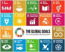 Pre-COP Webinar - Australia, 'Good' Global Governance and the Geopolitics of Climate Negotiation